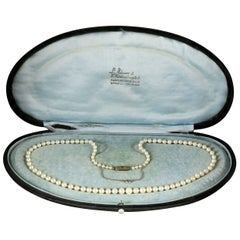 Antique Victorian Pearl Boxed Necklace, circa 1900