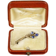 Antique Victorian Boxed Sapphire Halleys Comet Brooch Sapphire Diamond