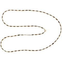 Victorian Plique-à-Jour Enamel and Gold Long Link Chain Necklace
