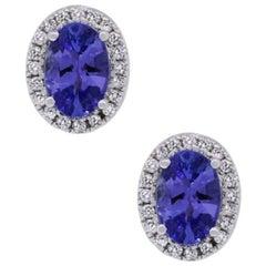 Tanzanite and Diamond Halo Stud Earrings