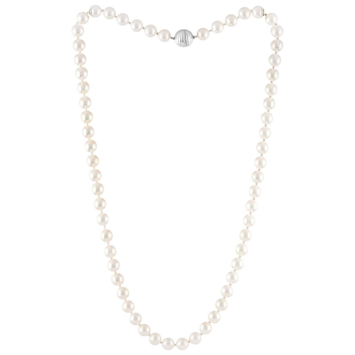 Tiffany & Co. Japanese Akoya Pearl Single Strand Platinum Necklace