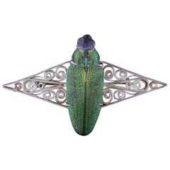 Antique French Scarab Beetle Brooch Art Nouveau, circa 1900