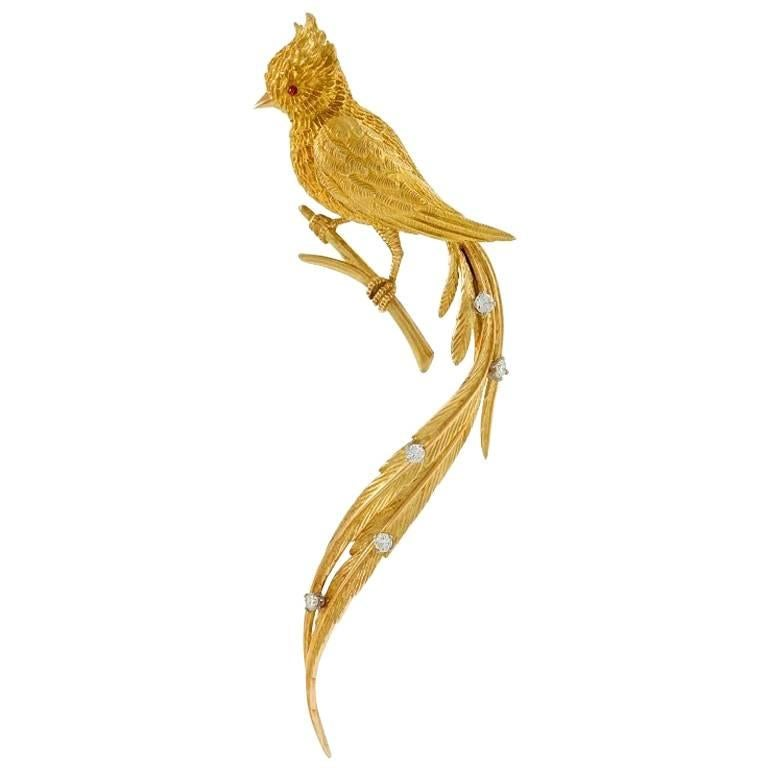 French 1960s Diamond Ruby and Gold Bird Brooch For Sale