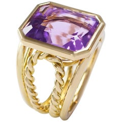 Coralie Van Caloen 18 Carat Yellow Gold Amethyst Torsadé Band Ring
