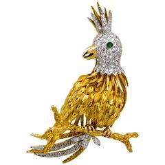 18 Karat Yellow Gold Gutschneider Parrot 5.50 Carat Brooch