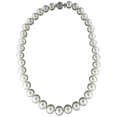 Australian Pearls Strand Rope Necklace