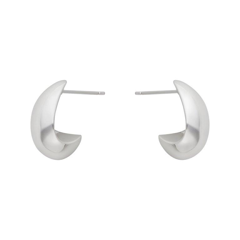 Sterling Silver Microcosm Earrings
