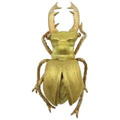 Buccellati Gold Beetle Brooch
