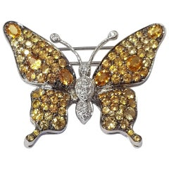 Butterfly Brooch with 5.20 Carat Sapphires and 0.20 Carat Diamonds in White Gold