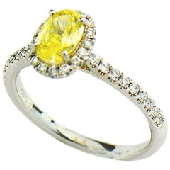 Natural Fancy Intense Yellow Diamond Ring, 1.01 ct. 14K White Gold 1.30 CTW. GIA