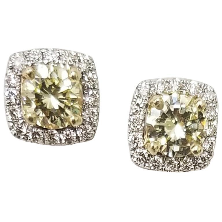 14 Karat White Gold Fancy Yellow Diamonds Earrings
