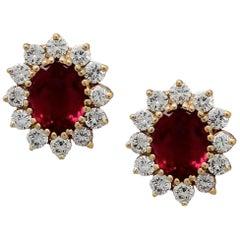 Floral Crimson Earrings
