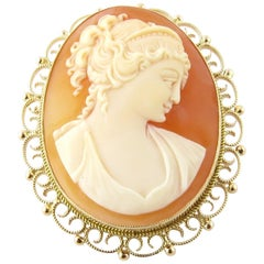 14 Karat Yellow Gold Cameo Pendant or Brooch
