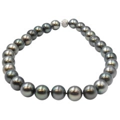 Sophia D. Tahitian Pearl Necklace with Platinum Diamond Clasp