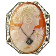 14 Karat White Gold Cameo Brooch or Pendant