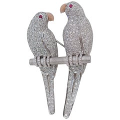 Parrots Love Bird Gold Diamond Coral Ruby Pendant Brooch