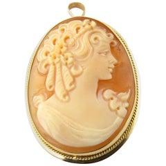 14 Karat Yellow Gold Cameo Pendant or Brooch