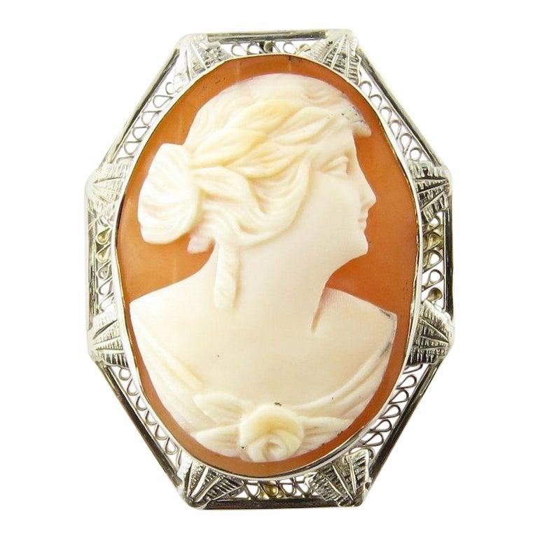 14 Karat White Gold Cameo Pendant or Brooch