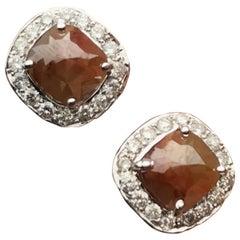 Brauner Diamant 18 Karat Weißgold Ohrstecker