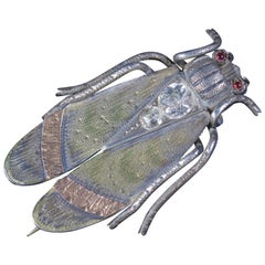 Antique Victorian Beetle Paste Garnet Brooch Silver, circa 1880