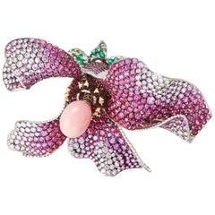 Conch Pearl 18 Karat Yellow Gold Red Gold Diamonds Brooch Aenea Jewellery