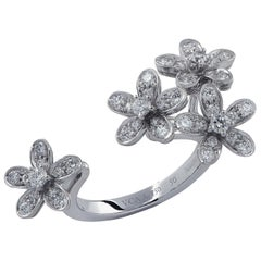 Van Cleef & Arpels Socrate Between the Finger Ring