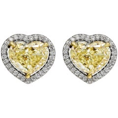 GIA Certified Heart Shape Yellow Diamond Halo Stud Earrings