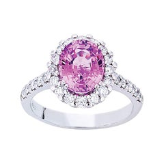 18 Carat White Gold Oval Pink Sapphire and Brilliant Cut Diamond Cluster Ring