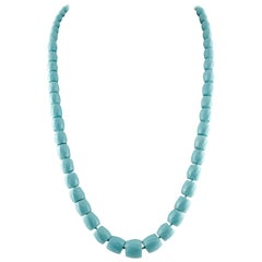 66.60 g Turquoise Paste Link Necklace