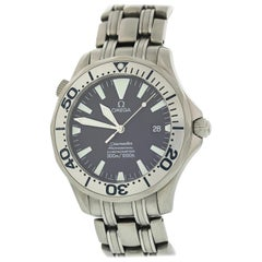 Omega Seamaster Professional 2231.80 Titanium Men's Watch