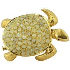 Cat's Eye Turtle Pin