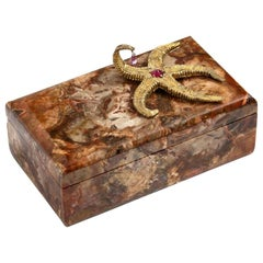 Petrified Wood Box with Silver-Gilt Starfish and Pink Sapphire by Nardi
