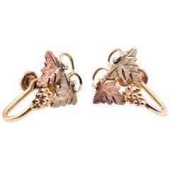 10 Karat Tri-Tone Black Hills Gold Earrings