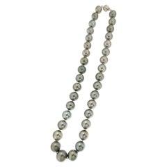 Tahiti Pearls, 18 Karat White Gold Clasp, Strand Rope Necklace