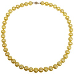 Genuine South Sea Pearl Bead Knotted String Necklace with 14 Karat Yellow Gold