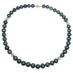 Tahitian Green Pearl Strand Necklace with 14 Karat Yellow Gold Accents and Clasp