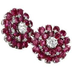 Rubies Diamond Earrings 18 Karat White Gold