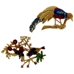 Duo of Enamel Tropical Bird Brooches