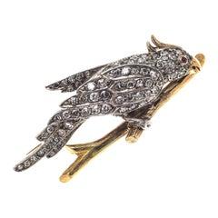 Retro 1930 Cockatoo Ruby Diamond Platinum Gold Brooch