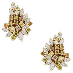 Multi Fancy Color Diamond Cluster Earrings