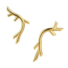 18 Carat Yellow Gold Vermeil Vine Creeper Earrings