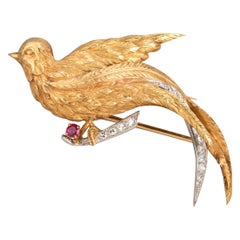 Gold Platinum Ruby and Diamonds French Paradise Bird Brooch