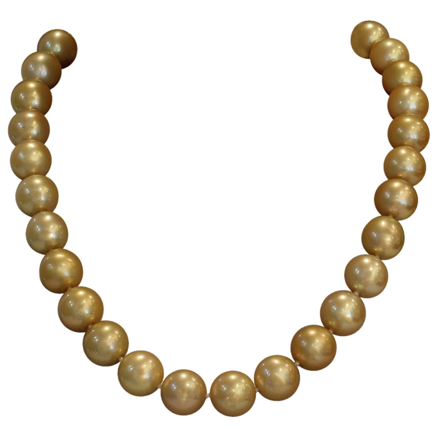 Golden South Sea Pearl Gold Necklace