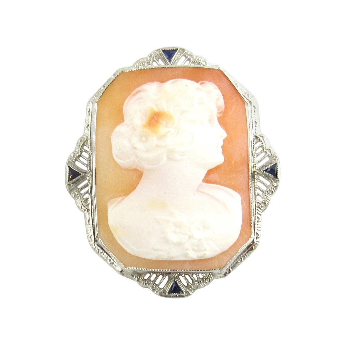 14 Karat White Gold Cameo Brooch / Pendant