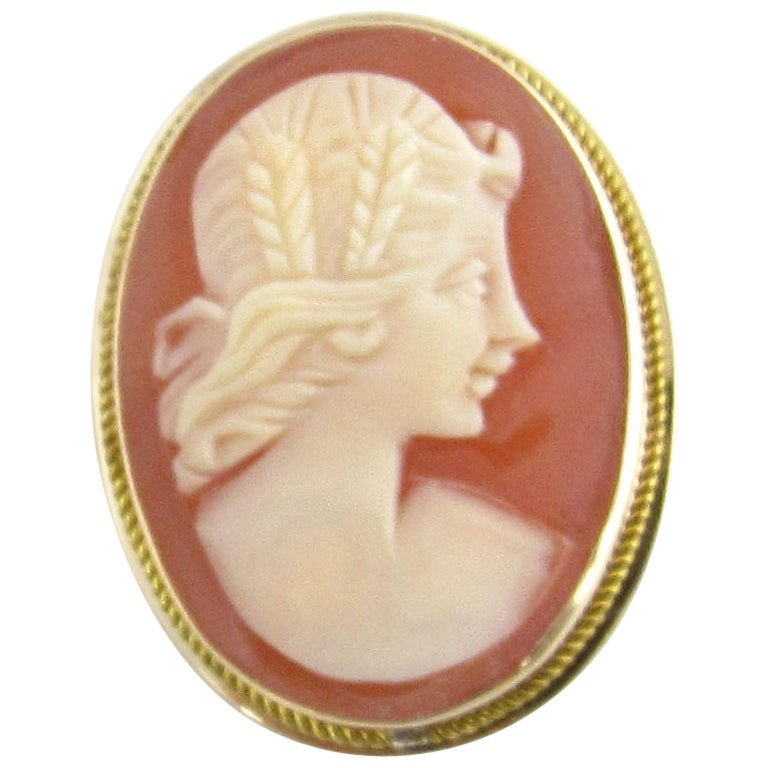 14 Karat Yellow Gold Cameo Brooch or Pendant