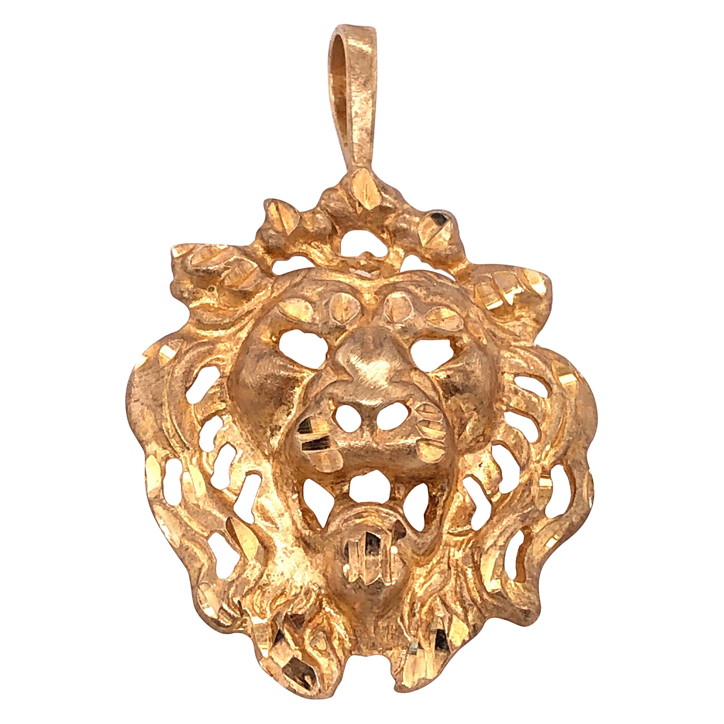 14 Karat Yellow Gold Lion Head Pendant or Charm