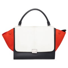 Celine Calf Hair and Leather Medium Trapeze Top Handle Bag