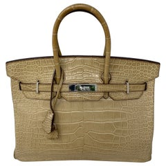 Hermes Birkin Matte Alligator Poussiere 35 Bag