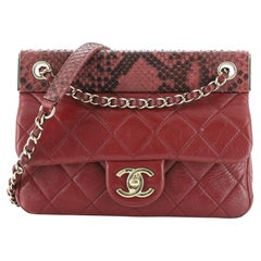 Chanel CC Frame Flap Bag Quilted Calfskin with Python Small