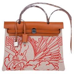 Hermes Herbag Zip Pegase Pop PM 31 Capucine Bag Special Edition